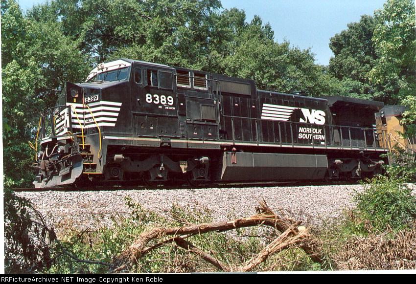 NS 8389 Horse Head