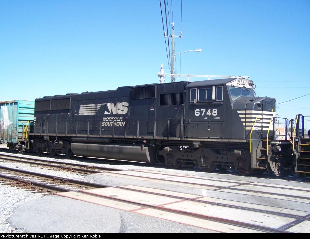 NS 6748 Horse Head