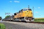 NS 7258 on H58