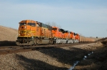 BNSF 8852 leads NEW SD70ACes and a GEVO on thier first revenue run