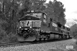 NS 9633 in Black and White