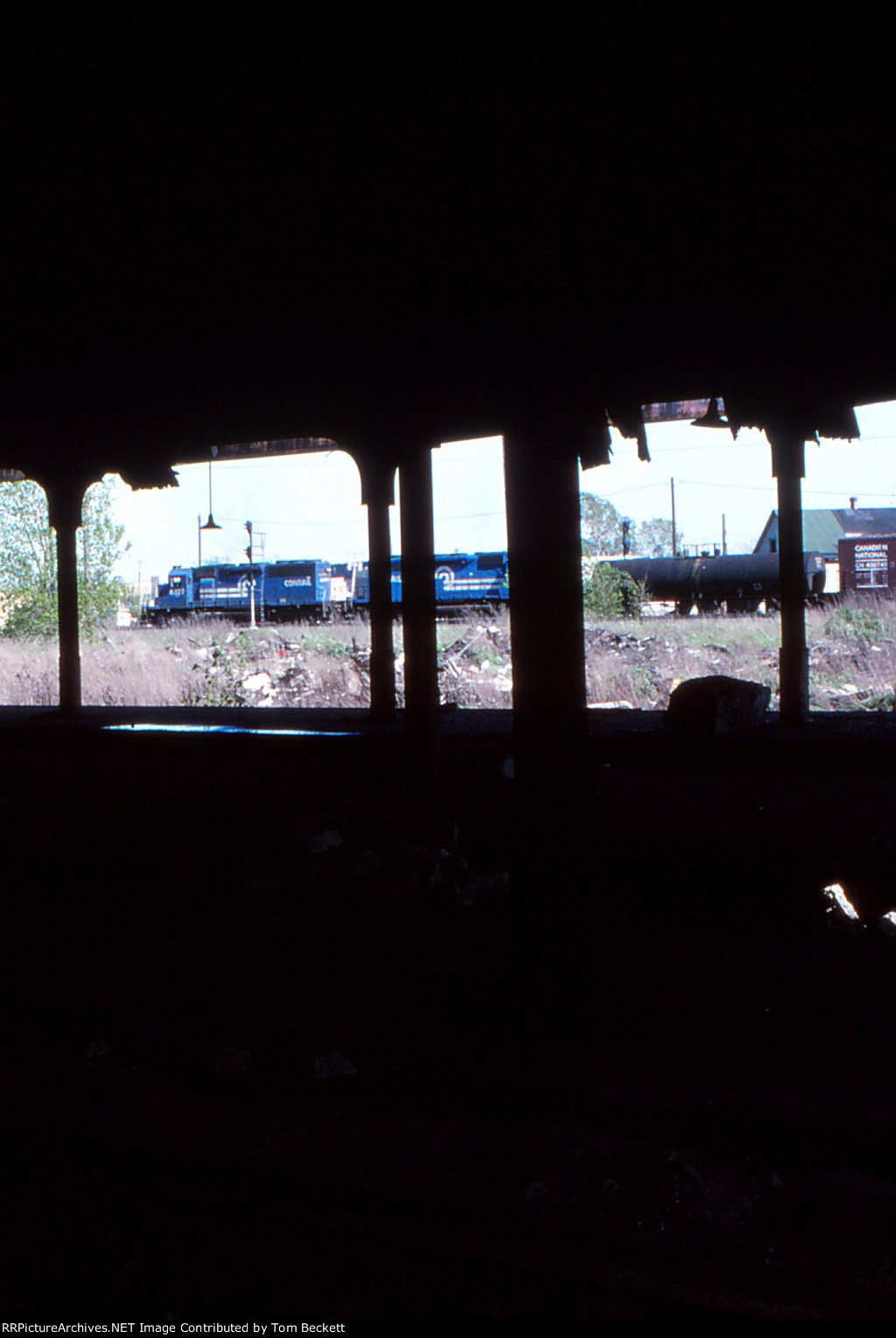 View from the shed