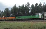 BNSF 1472 and BNSF 2316