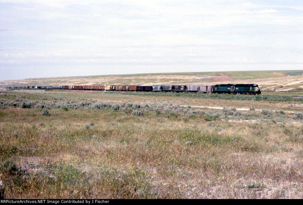 BN 6561