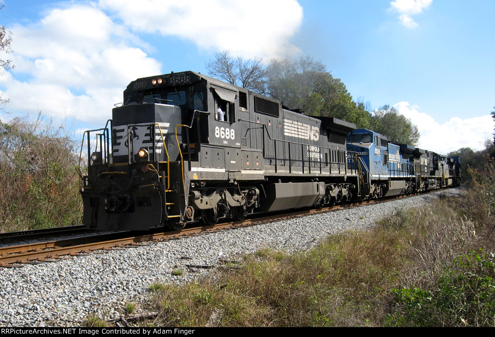 NS 8688 on NS 210
