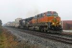BNSF 1017 on NS 209