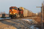 BNSF 7959 Brand new C4 leads a rack train into the golden sun.