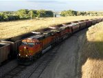 BNSF 5288 and BNSF 1052 westbound at Highway 446