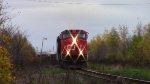 CN 2555 leads Train 407