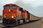 Pumpkins 'Movin Coal @ CP 131