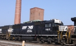 NS 6619 shows its fresh horsehead paint