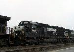 NS 6555