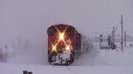 CN Train 120
