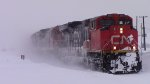 CN 8801 Leads Train 120