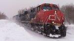 CN 2300 Leads Train 305