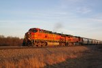 A golden BNSF 5417 leads a northbound sand train