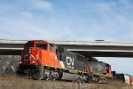 CN 5779 leads a northbound intermodal under Highway 164