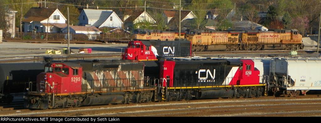 CN 5295