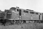 EL 6561