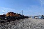 BNSF 4146 leads SB grain train