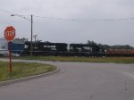 NS 7006 and NS 4641