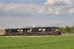 NS 6917 East