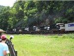 WB Pig Train