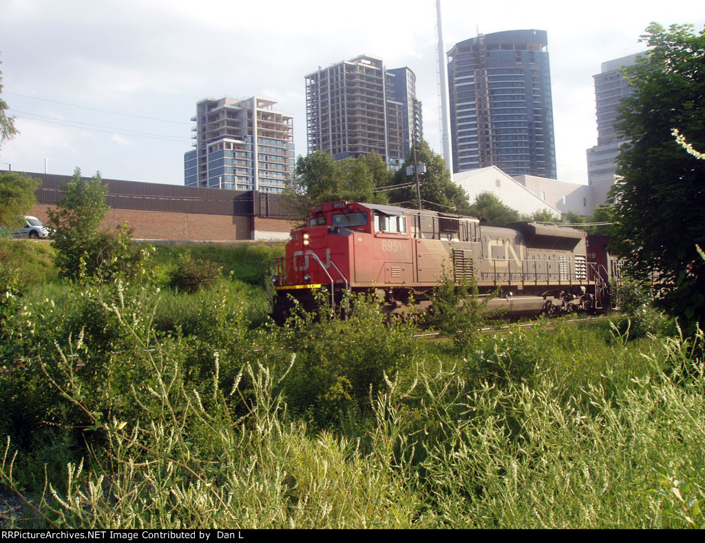 CN 8951