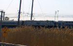 Amtrak ACS-64 661