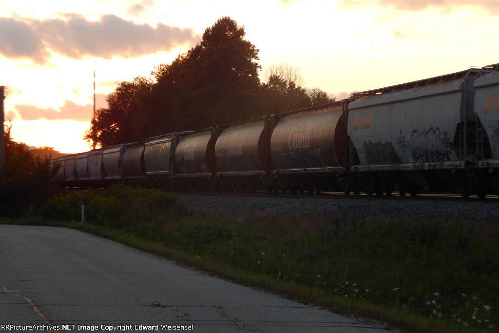 Grain hoppers in the front half of 288 roll east