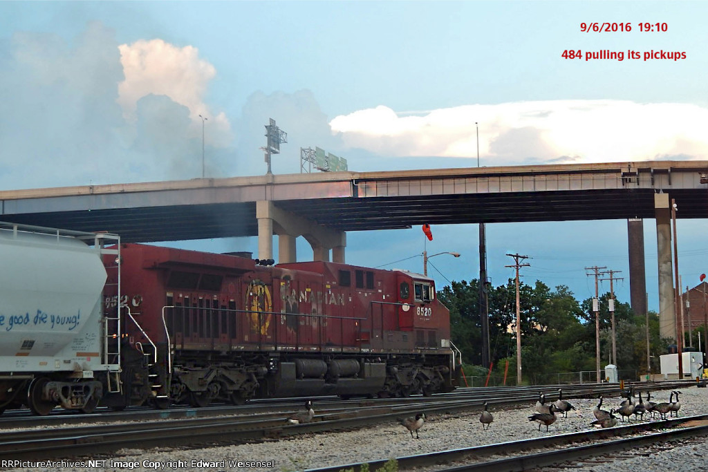 Canadas fowling the tracks south of 484's lonely leader