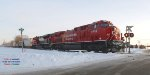 CP 581, a fresh beaver, grain empties up front & oil empties trailing, and a south-of-the-border #2