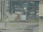 NS 8975