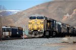 UP C44/60AC # 6905 leads an eastbound grain train at Echo, UT. March 10/ 2015