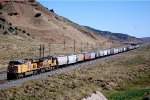 UP ES-44AC #7407 leads a seemingly infinite westbound grain train at the Echo Canyon Road OHB, east of Emory, UT. 8/16/2014