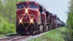 CN 2299 Leads Train 406