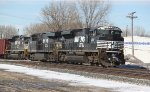 A trio of NS for Unit Tank Car Train
