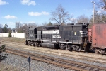 NS 2849 in the mini-yard