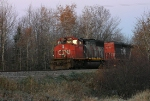 CN 5290 and 5340