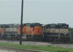 BNSF 289 and BNSF 9448