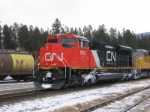 CN 8016