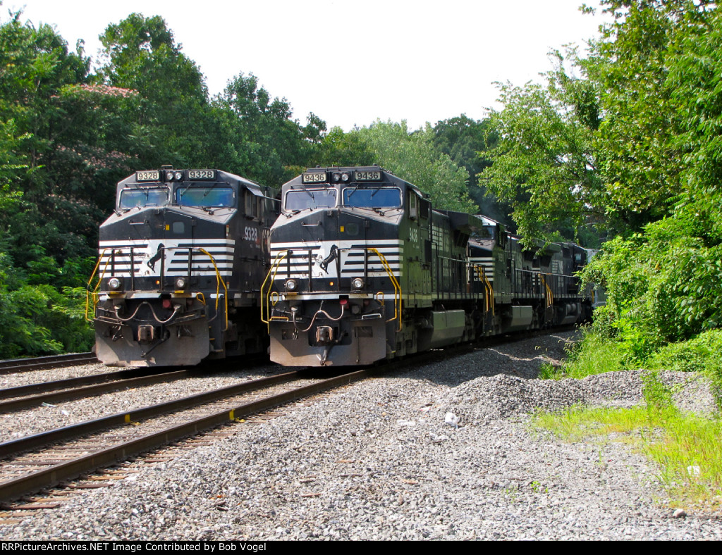 NS 9328 and 9436