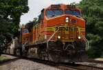 BNSF4574 and BNSF6333 passing Peck Park