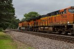 BNSF6905 and BNSF8358 passing Peck Park