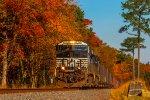 Fall Foliage Arrives in Delaware