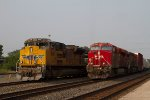 CP8948 and CP9623; UP8761 and NS7555