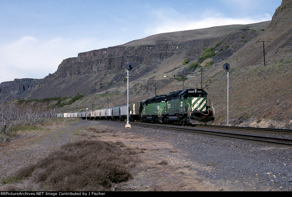 BN 7029
