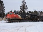CN 3044 in Trout Lake