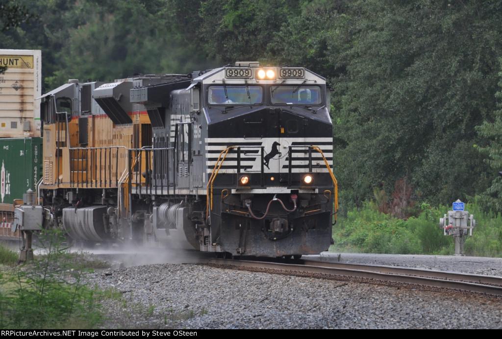 NS 9909