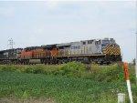 NS, BNSF, and Citi Rail!